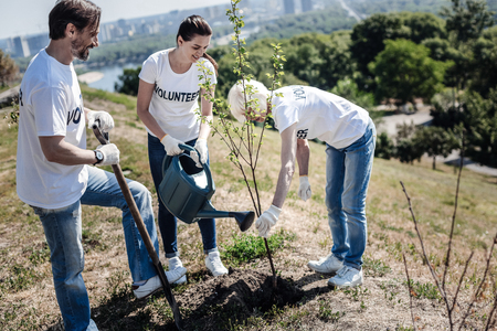 Eco organization. Positive nice joyful volunteers standing around the tree and looking at it while planting it Stock Photo