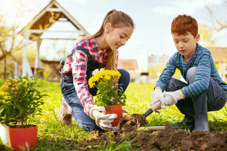 Ocupacion familiar. Linda chica positiva sosteniendo una maceta mientras ayuda a su hermano a plantarlos