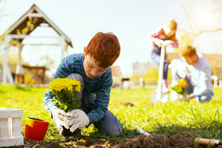 Gardening work. Nice young boy holding flowers while working outdoors 스톡 콘텐츠