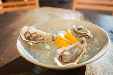 Lying on ice. Three fresh oysters and thin pieces of lemons lying on cold ice in plain white plate standing on the table