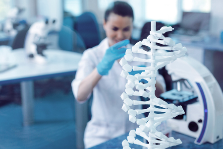 Modern genetics. Selective focus of a DNA model standing on the table in the genetic laboratory Foto de archivo