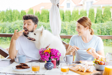 Breakfast on terrace. Happy beaming couple feeling funny while having breakfast on summer terrace with their dog