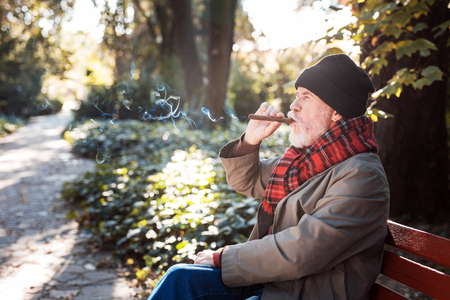 Best pleasure. Pleasant senior man sitting on the bench while enjoying his Cuban cigar Stock fotó