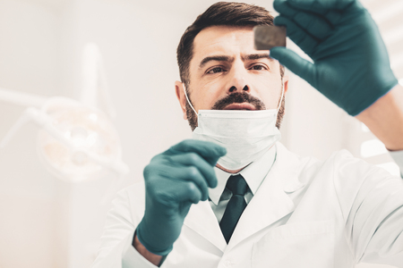 Radiography. Pleasant bearded dentist mindfully looking at radiography of tooth while standing against white background