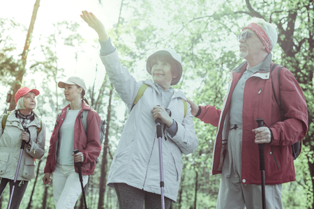 Happy pension. Active and cheerful elderly people hiking in the forest Stockfoto