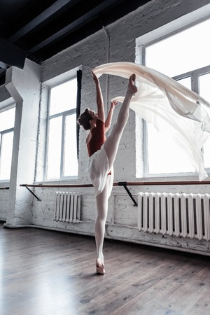 Beautiful dance. Attractive skillful ballerina holding her leg up while performing the dance Zdjęcie Seryjne