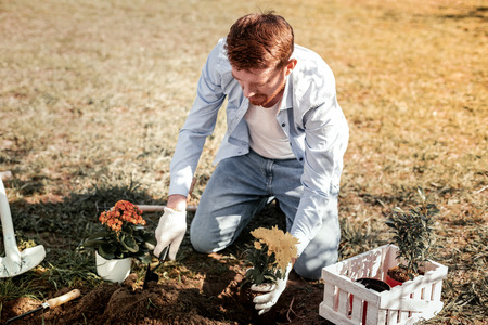 Stunning man. Red-haired stunning man with beard looking on flowers while putting shiny flowers to land