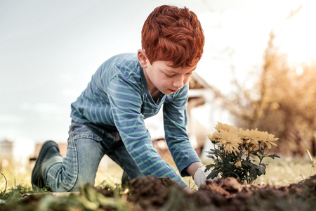 Home clothes. Small gentleman with freckles wearing home clothes while planting herb at home