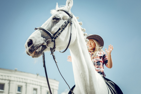 Horse riding. Low angle of a beautiful white horse with a nice cute girl sitting on it