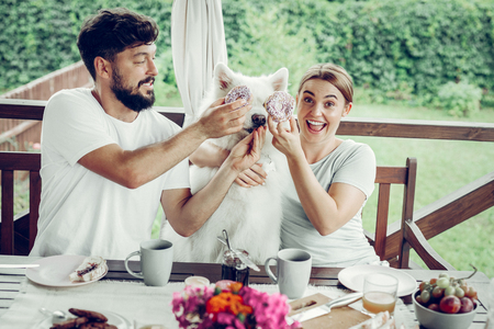 Having fun with a dog. Happy contended laughing beaming red-haired mid-adult wife and dark-haired handsome bearded husband having fun and putting doughnuts to the face of their fluffy sitting dog 스톡 콘텐츠 - 122666353