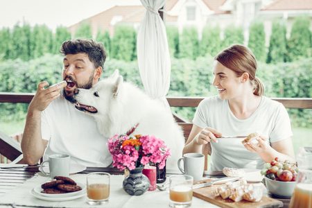 Cookie lover. Cheerful good-looking attractive man with dark hair and beard eating cookie and fluffy big beautiful dog reaching to it.