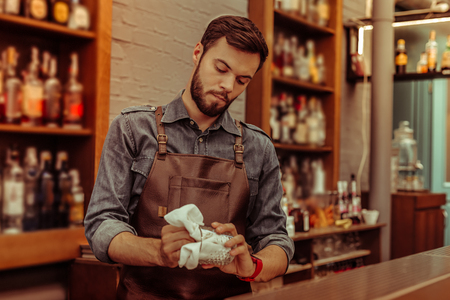 Polishing glasses. Handsome focused hard-working calm dark-haired bearded young-adult nice-working bartender wearing cotton shirt and black apron polishing a glass at the bar