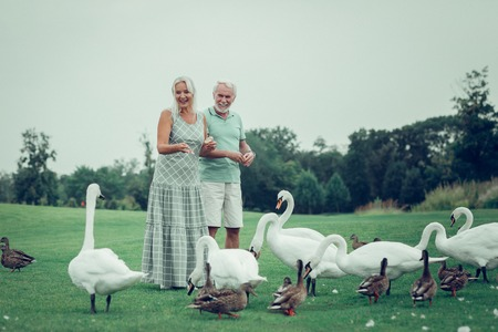 Pleasurable activity. Happy nice couple standing together while feeding birds in the park Imagens - 124984332