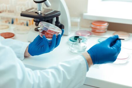 Taking samples. Selective focus of a petri dish being open while taking samples for analysis Stock Photo
