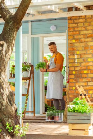 Sharing pictures. Smiling florist standing on the flower shop porch photographing his plant.