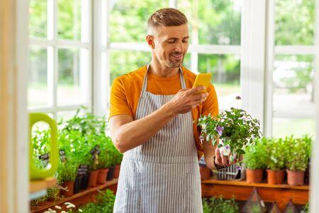 Zeigen Sie Ihre Arbeit. Fröhlicher Blumenladenbesitzer, der einen der Blumentöpfe in seinem Geschäft fotografiert.