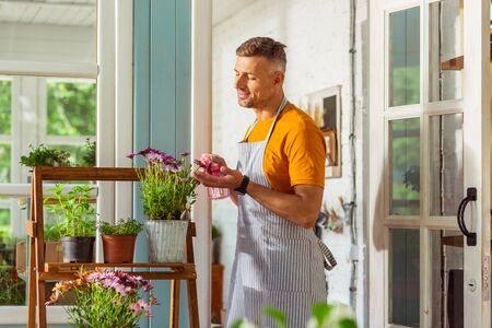 Admiring flowers. Happy handsome florist standing on a porch and spraying flowers from the sprinkling can.