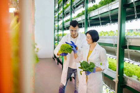 Agriculturists feeling joyful. Couple of agriculturists feeling joyful while working in greenhouse together Stock Photo