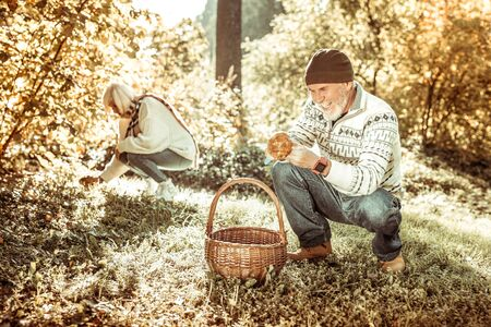 Great finding. Cheerful senior man squatting down gathering mushrooms with his wife in the forest. Imagens