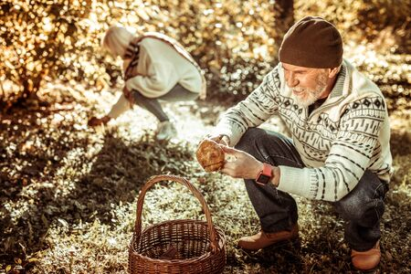 Mushroom gatherers. Elderly couple squatting down on the grass picking mushrooms in the autumn forest.