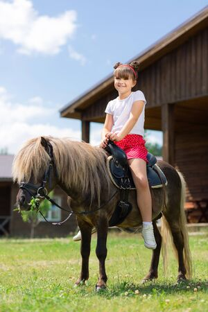 Cute hairstyle. Small girl with cute hairstyle sitting on the brown beautiful horse and smiling