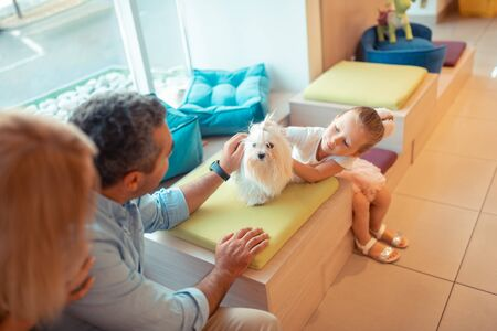Playing with white fluffy dog. Little girl feeling happy touching and playing with white fluffy dog sitting near parents