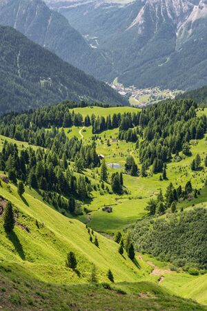 Scenic Alps with green mountain hill and pine tree forest in national park Reklamní fotografie