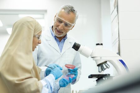 International student. Attentive Muslim woman wearing hijab while working in laboratory 写真素材