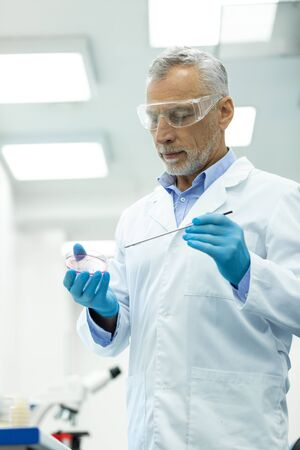 Work in lab. Attentive grey-haired scientist wearing protective gloves while examining DNA 写真素材