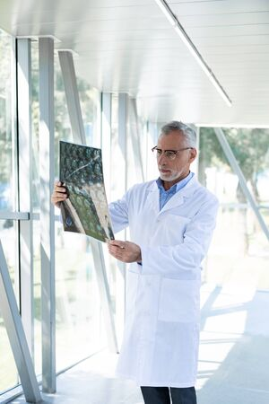 Handsome doctor. Competent medical worker standing near window and looking at picture