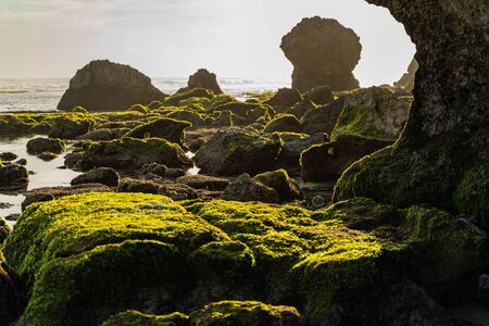 Stones covered with green moss are being washed by calm waters