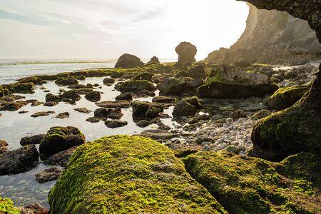 Large stones with seaweed on deserted seashore among cliffs Reklamní fotografie