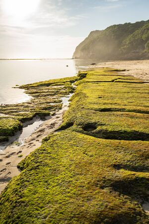 Rocks with moss washed by ocean in beach surrounded by cliffs