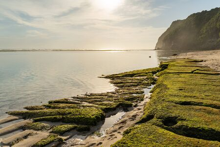 Deserted wild beach in tropical lagoon with green cliffs Reklamní fotografie