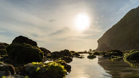 Morning in wild beach with cliffs and stones covered with moss