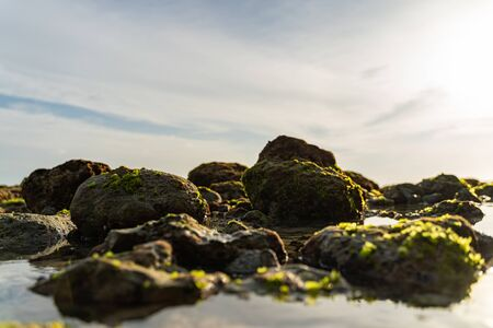 Calm ocean is washing rocks covered with greenery under sun Reklamní fotografie
