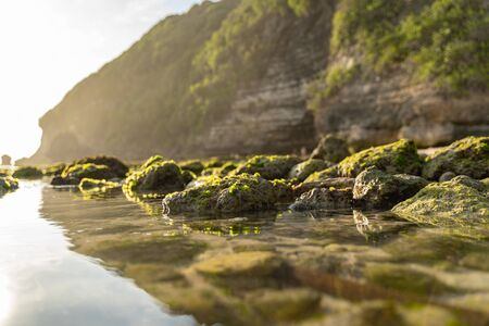 Pure clean water among stones covered with green moss Reklamní fotografie