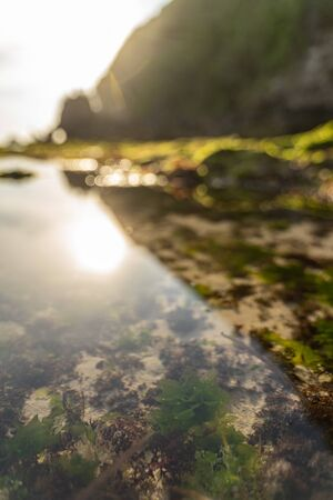 Clear ocean reflects sunshine on shore with rocky cliff Reklamní fotografie