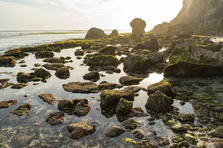 Sun is shining on shore with cliff and stones covered in alga