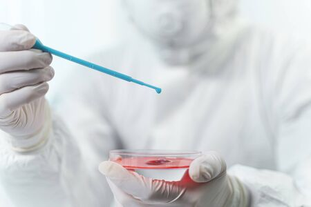 Working process. Attentive worker holding plastic pipette while dropping reagent on red liquid