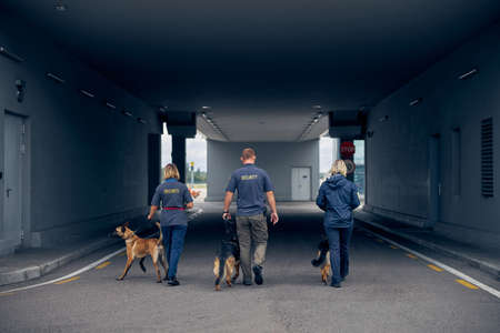 Back view of border service officers with two German Shepherd dogs and Malinois dog strolling down the tunnel Imagens