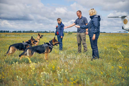 Professional dog trainers teaching German Shepherd dogs in airfield with cloudy sky on background