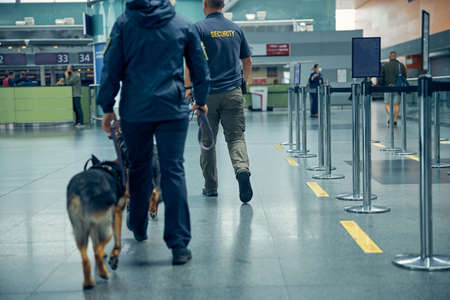 Two officers with detection dogs strolling down airport terminal hall