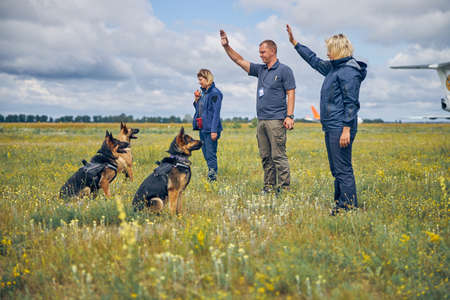 Two women and man handlers teaching German Shepherd dogs in airfield with cloudy sky on background 写真素材 - 153589770