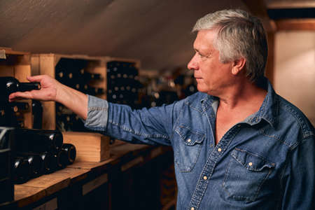 Calm adult man in a casual denim shirt standing in a winery cellar in front of a shelf and taking a bottle from it
