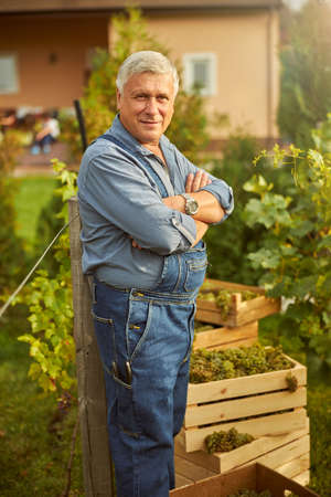 Proud vineyard owner having his amrs crossed onn chest and standing near grapevines while looking at the camera Stock Photo