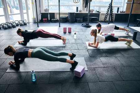 Four dedicated sporty ladies planking with determination on their fitness mats