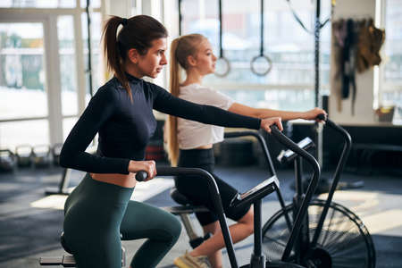 Serious brunette lady looking focused while working out on gym bike beside her girlfriend