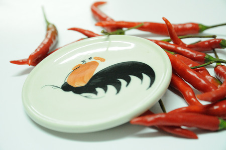 Red chilli with cock saucer paint