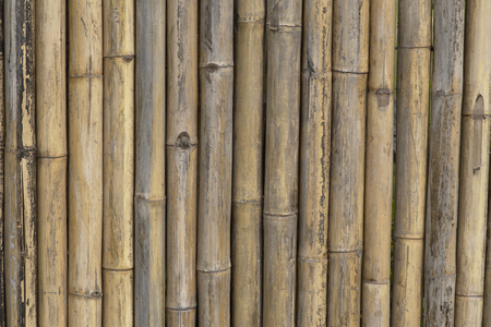 Close-up bamboo fence background texture, tradition tropical design found in chinese, japan , Asia. Stock fotó